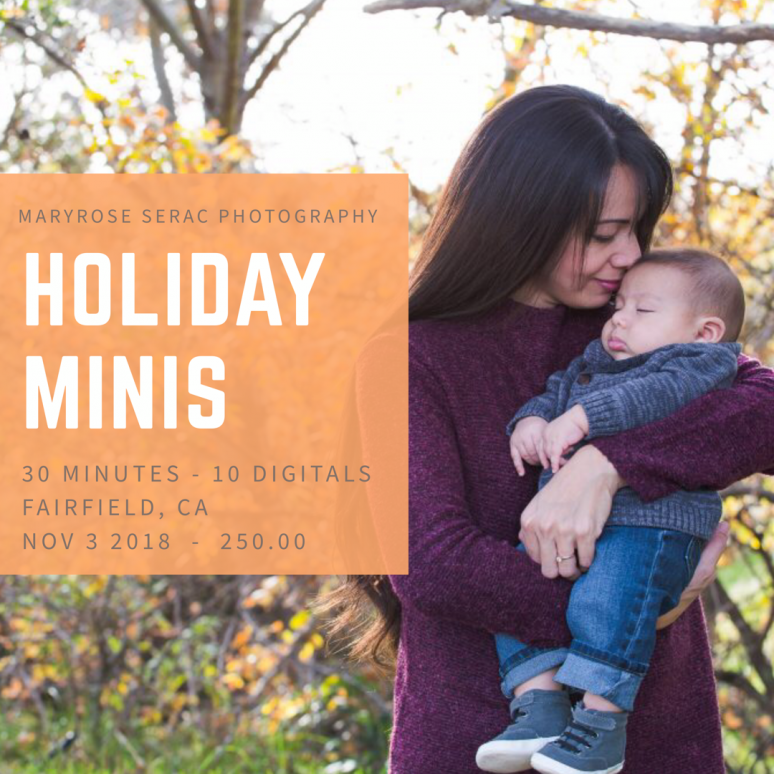 2019 Holiday Mini Sessions